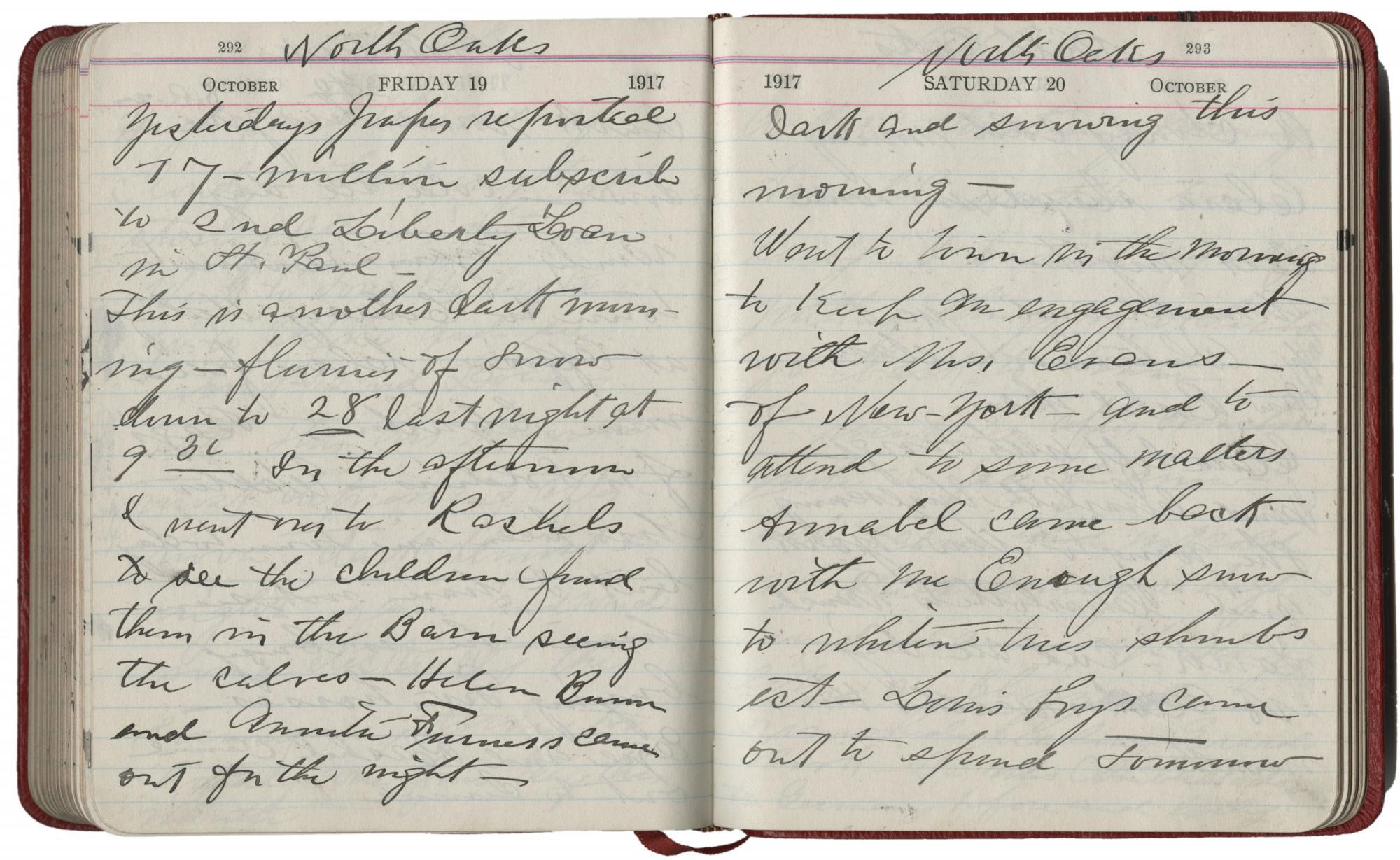 Mary Hill diary