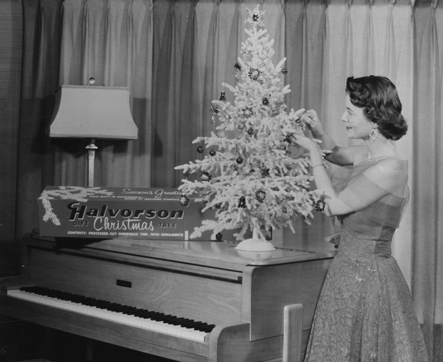Photo of tree on piano
