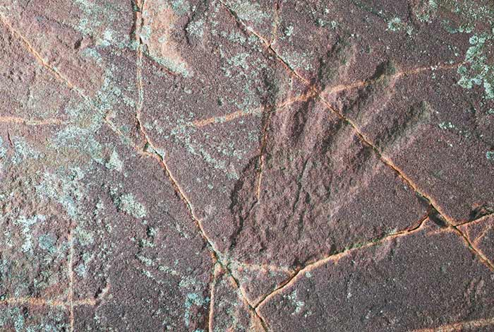 Jeffers Petroglyphs.