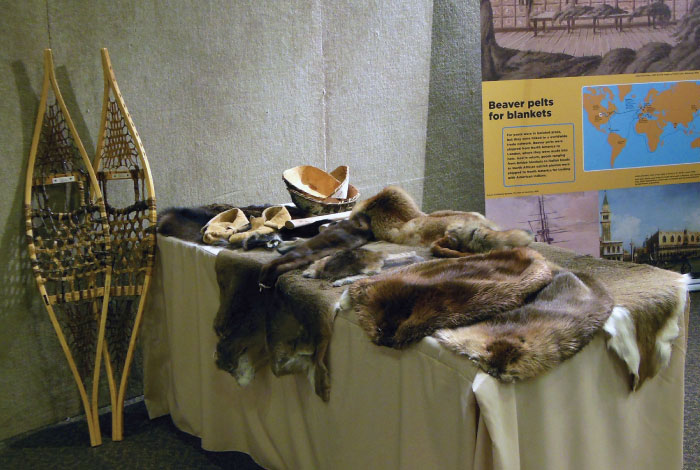 Pelts on table.