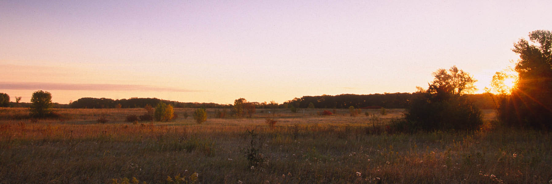 Panorama shot of prairie during sunset.