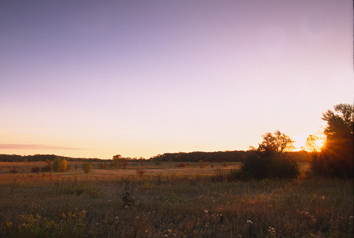 Birch Coulee Battlefield.