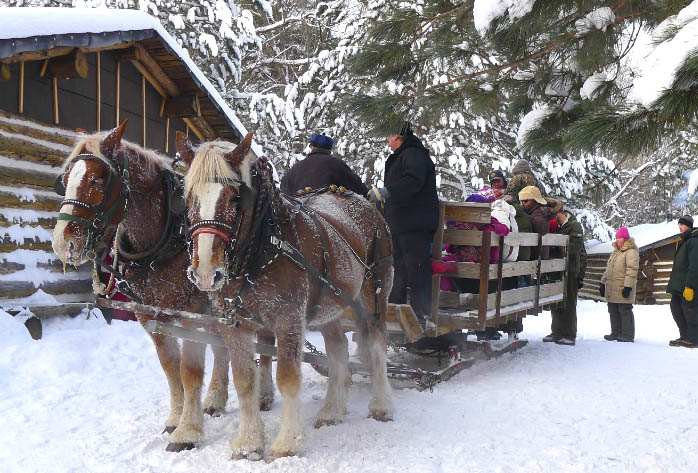 Two horses pulling a sleigh full of people in the snow.