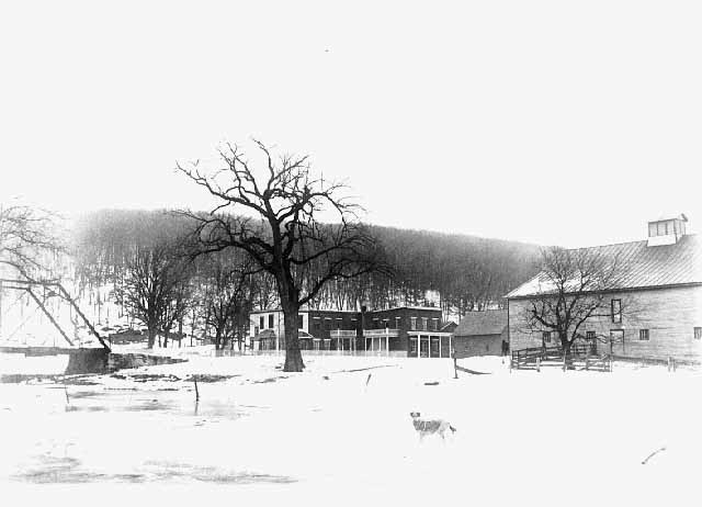 Wintry view of a dog standing in front of the Meighen store and a barn. Source: MNHS Collections.