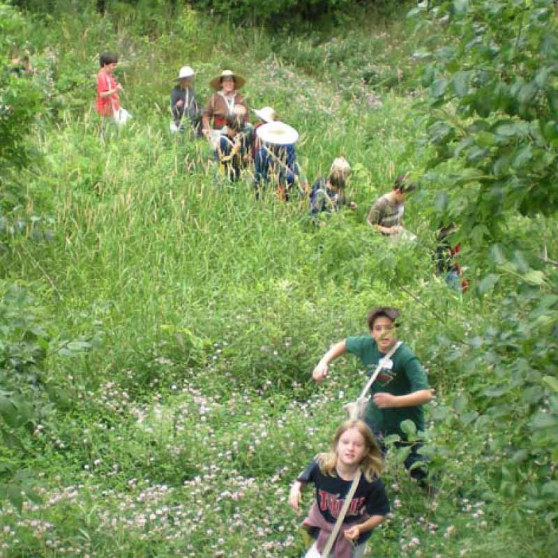 A group of kids hiking down a hill through a path of tall grass.