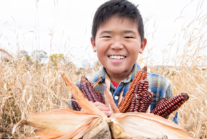 A smiling boy holding some corn in a field.