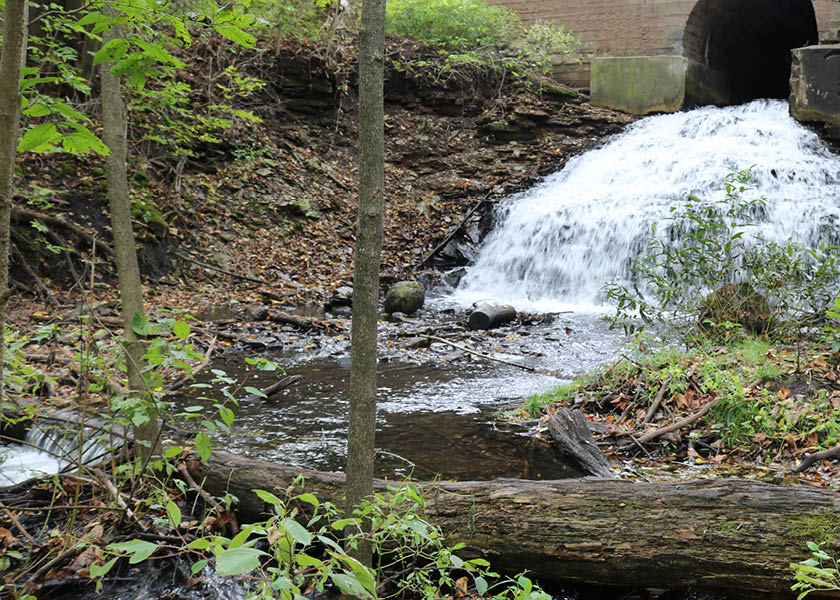 Water rushing out of a tunnel set on a hill at Marine Mill Park.