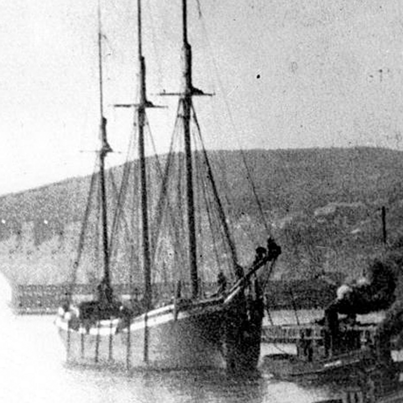 A schooner with three masts near the harbor