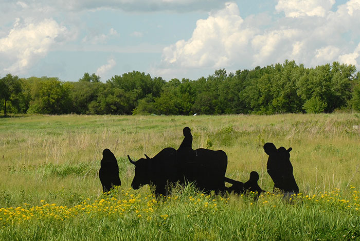 A silhouette of a family walking in a field, riding atop an ox, and sitting in a travois.