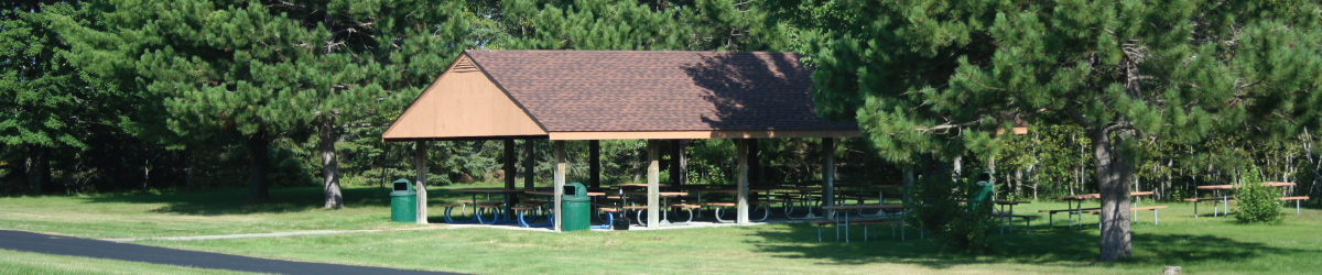 A group picnic shelter surrounded by large pine trees.