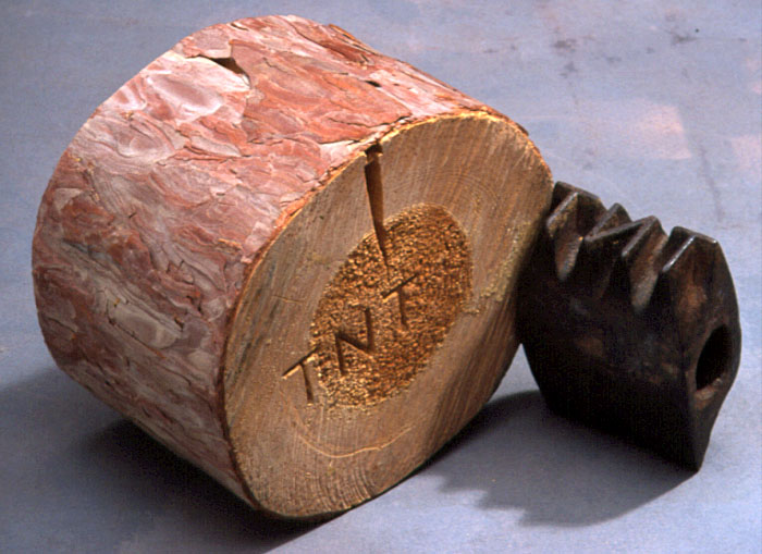 Color photo of a log stamp and log end with the TNT mark
