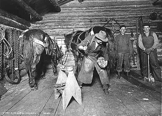 Photo of a blacksmith hammering a shoe onto a horse, two men and a second horse stand off to the side, 1912.