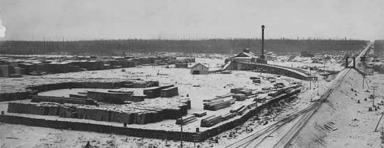 Photo of a sawmill and lumberyard located next to railroad tracks, 1893.