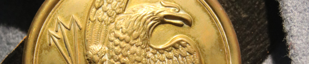 Close-up of a medal depicting an eagle clutching three arrows.