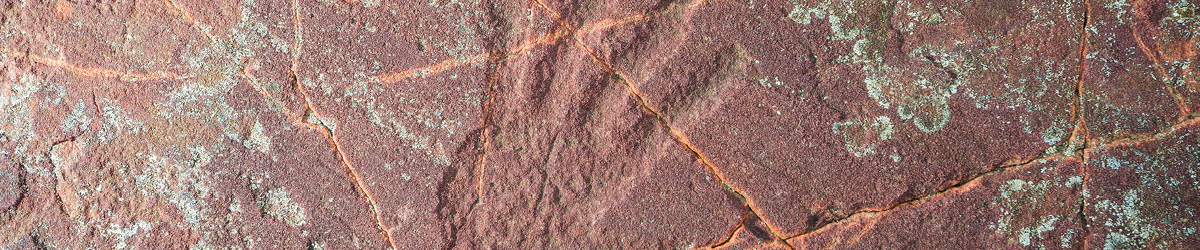 A palm graphic carved on a cracked rock.