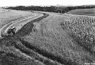 Contour plowing near Millville, Wabasha County, 1937.