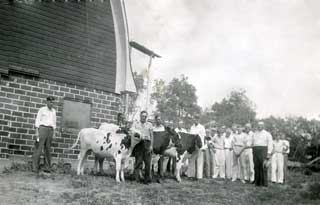 Melfred Roragen with three 4-H dairy calves, 1936.