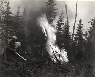 Civilian Conservation Corps fire fighters in northern Minnesota, 1933.