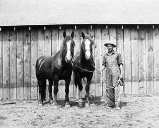 Photo: Man with two horses, 1925.