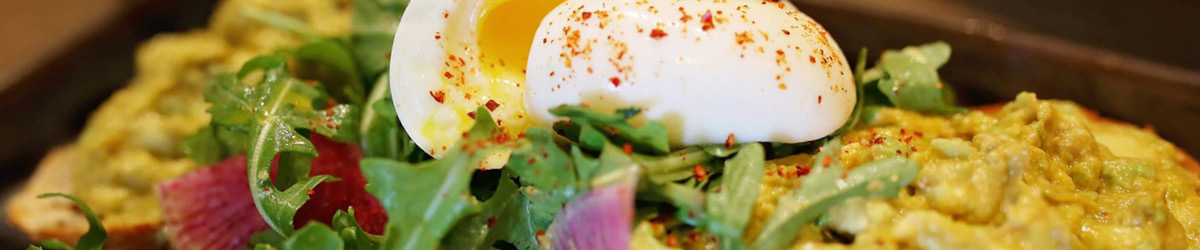 An open faced sandwich with arugula eggs and avocado spread.